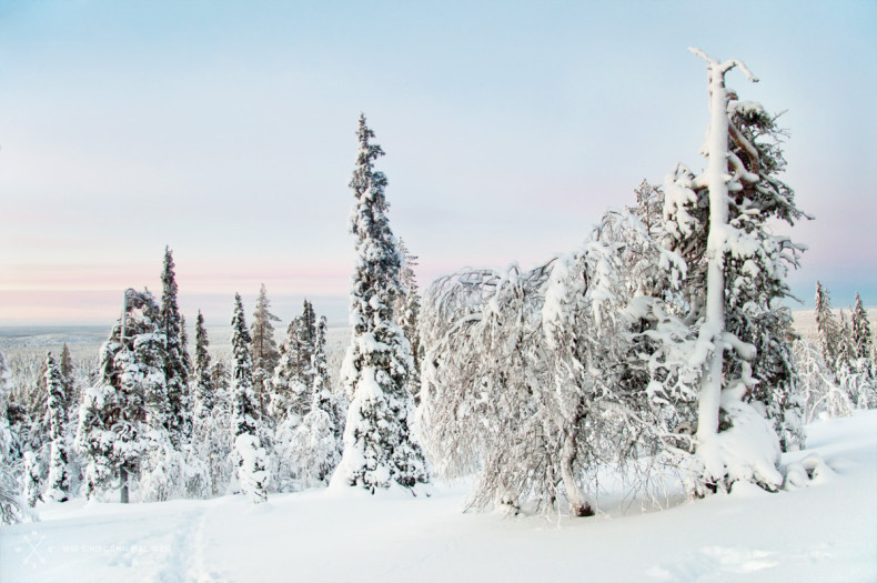 Im Winter in Äkäslompolo - Finnland