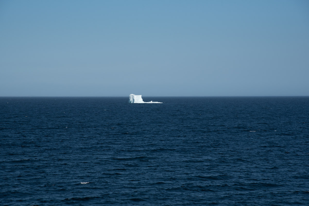 Eisberg in Bonavista