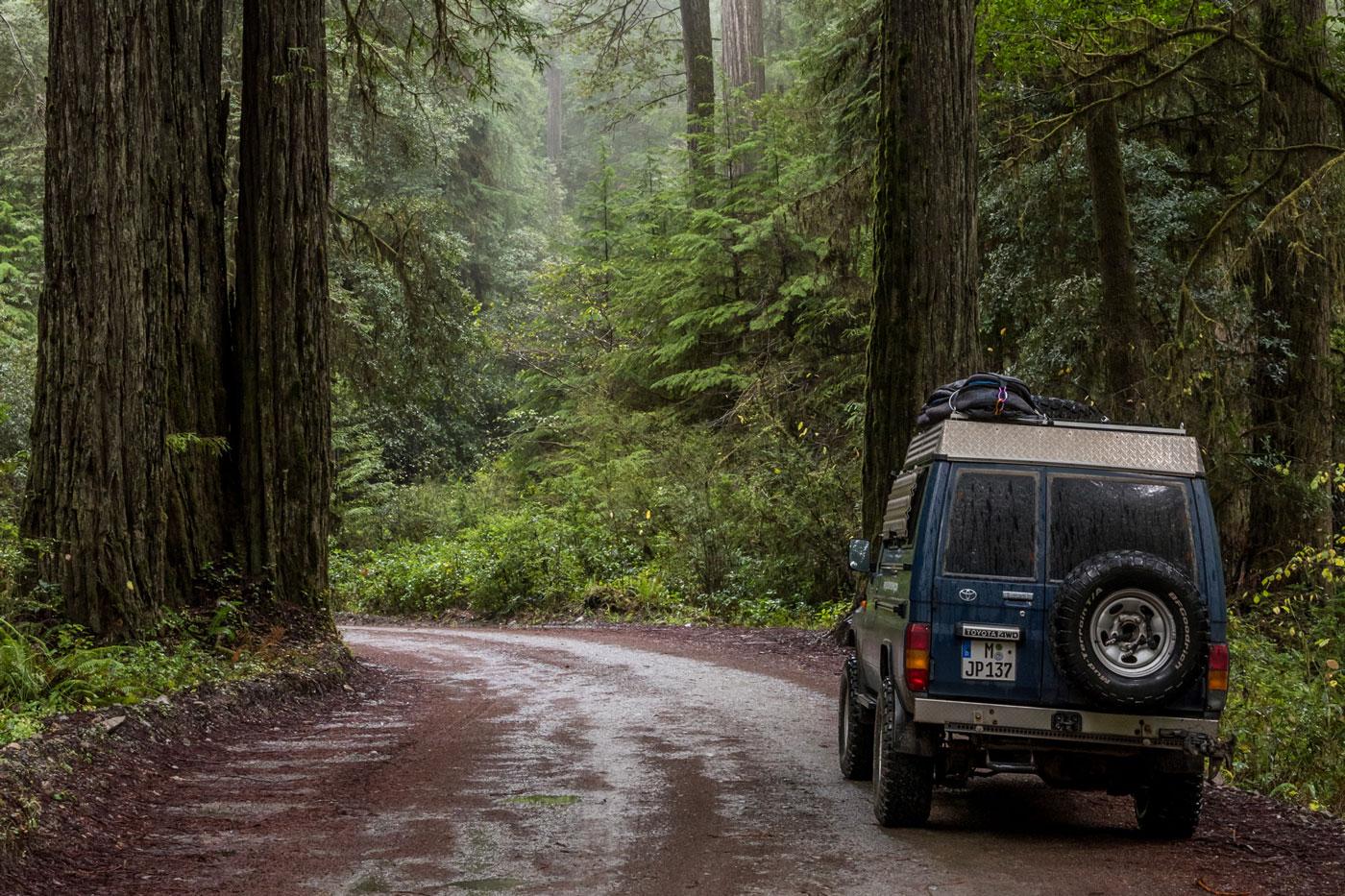 Im Eiltempo durch Washington und Oregon