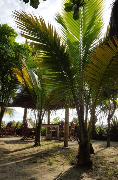 Hotel Bambu - Canoa