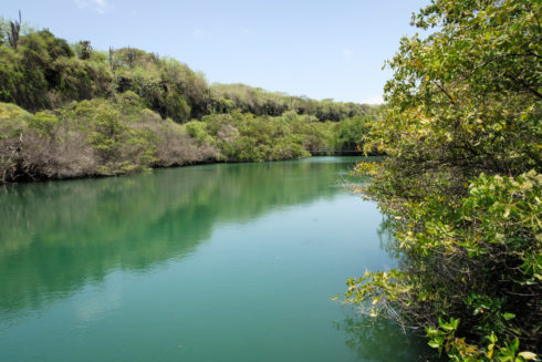 Laguna de las Ninfas