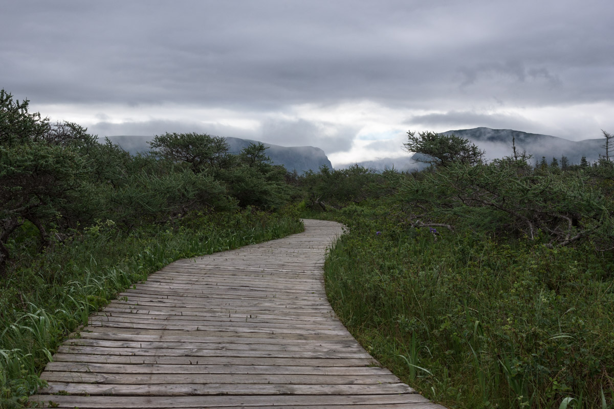 Der Western Brook Pond Trail