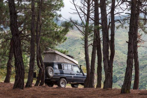 Los Pinos Campground
