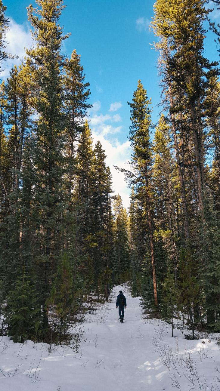 Moose Lake Wanderung