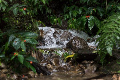 Wasserfall Wanderung Mindo