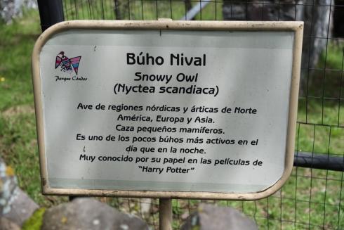 """Zitat: """"Bekannt für seine Rolle in den Harry-Potter-Filmen"""""""