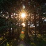 Neufundland Teil 3 und Cape Breton