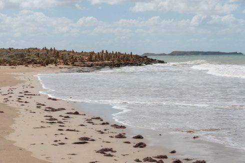 Punta Agujas