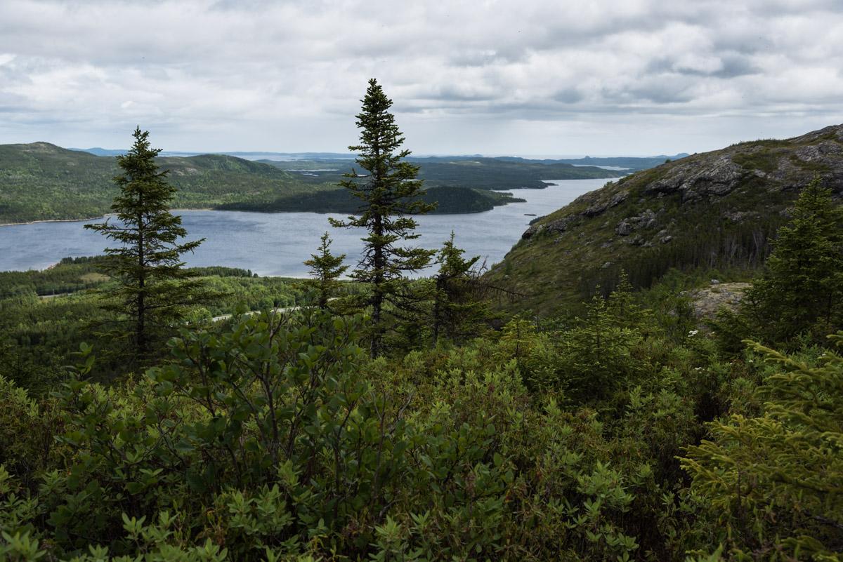 Ausblick vom Louil Hills Trail