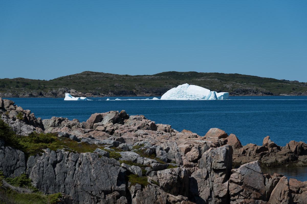 Eisberg am Lower Little Harbour Trail
