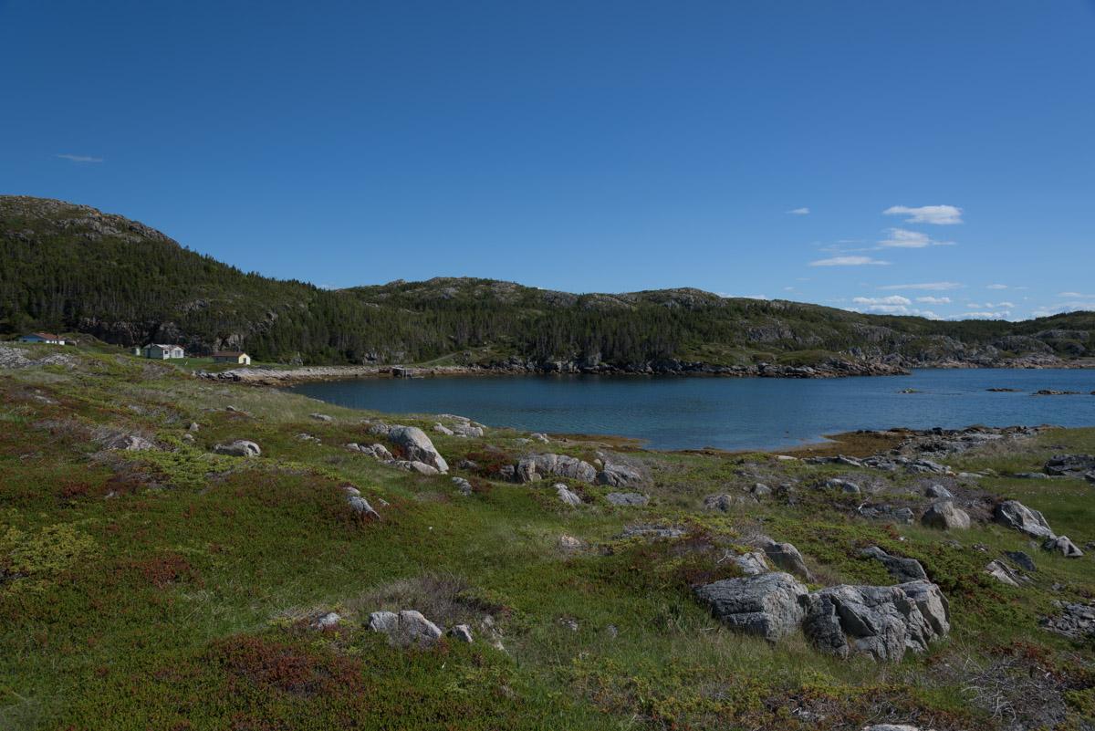 Lower Little Harbour Trail