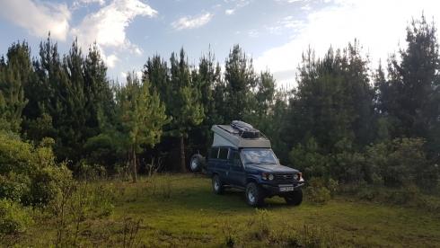 Campspot im Valle del Cocora